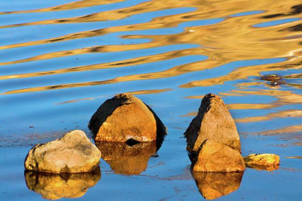 Photograph - Reflections In Zen II by John De Bord