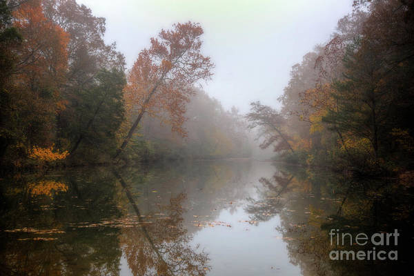 Photograph - Reflections by Larry McMahon