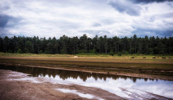 Photograph - Reflections by Nick Bywater