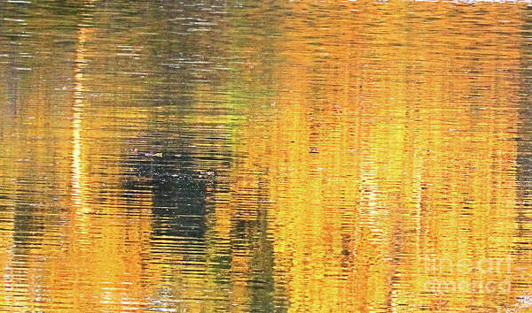 Millrace Wall Art - Photograph - Reflections Of A Sunrise by Scott D Van Osdol