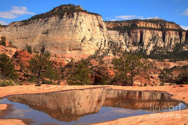 Photograph - Reflections Of A Zion Icon by Adam Jewell