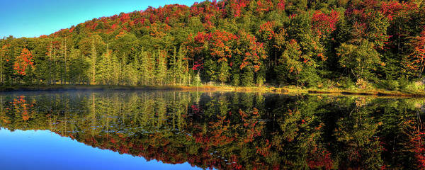 Photograph - Reflections Of Autumn by David Patterson