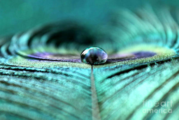 Sophisticated Photograph - Reflections Of Clarity by Krissy Katsimbras
