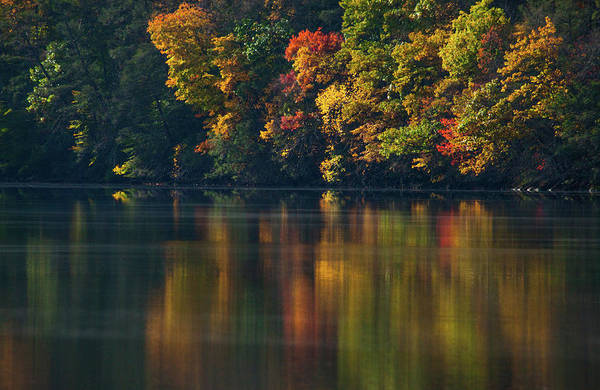 Wall Art - Photograph - Reflections Of Colors by Karol Livote