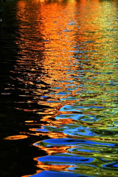 Wall Art - Photograph - Reflections Of Eden by Nancy Morrison