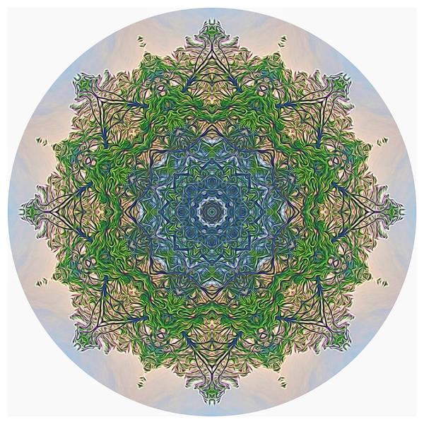 Digital Art - Reflections Of Life Mandala by Beth Sawickie