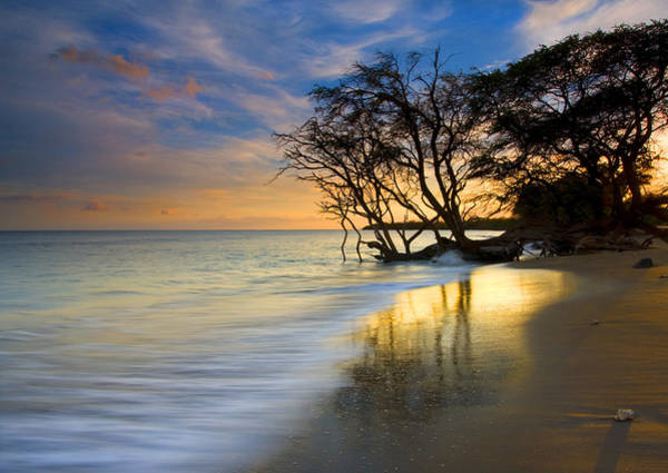 Maui Sunset Photograph - Reflections Of Paradise by Mike  Dawson