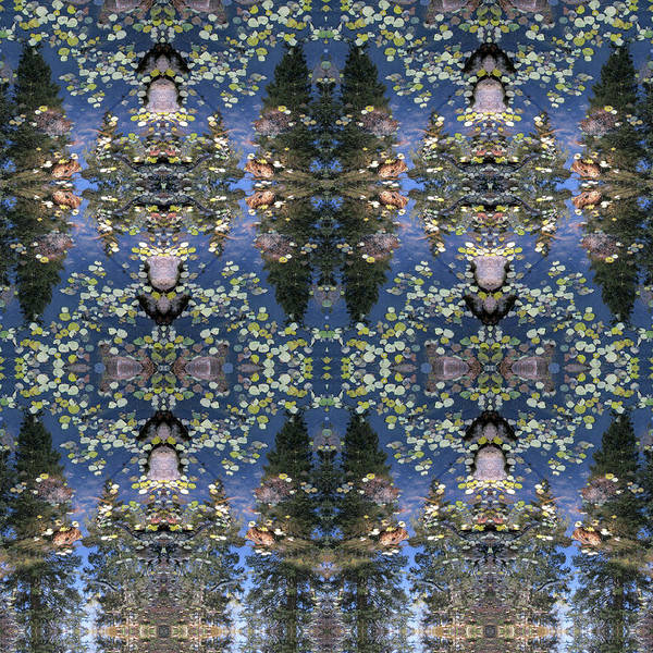 Digital Art - Reflections Of Pines In A Pond Of Floating Aspen Leaves by Julia L Wright