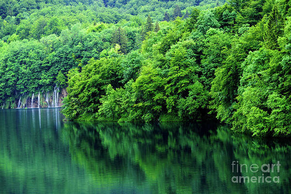 Photograph - Reflections Of Plitvice, Plitvice Lakes National Park, Croatia by Global Light Photography - Nicole Leffer