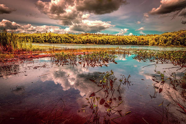 Photograph - Reflections Of Summer Past by Bob Orsillo