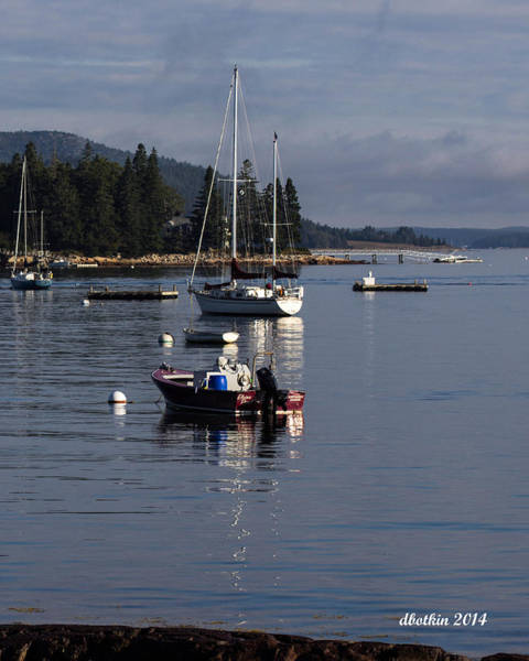 Wall Art - Photograph - Reflections Of Sw Harbor by Dick Botkin