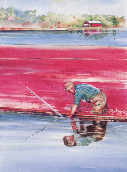Painting - Reflections Of The Cranberry Man by P Anthony Visco