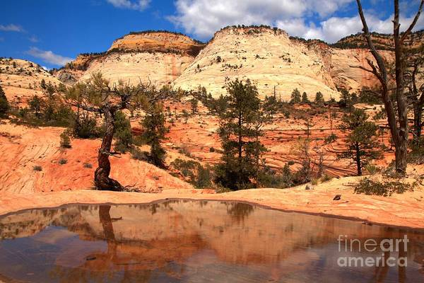 Photograph - Reflections Of The East Zion Back Country by Adam Jewell