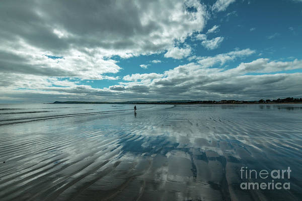 Photograph - Reflections On A Beach by Marc Daly