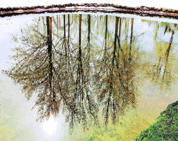 Photograph - Reflections On A Snowy Day. by Roger Bester