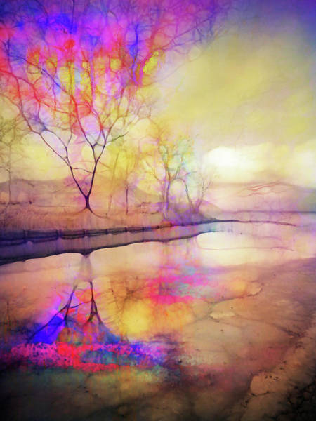 Frozen River Digital Art - Reflections On Ice by Tara Turner