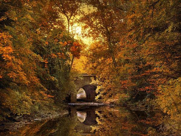 Photograph - Reflections On October by Jessica Jenney