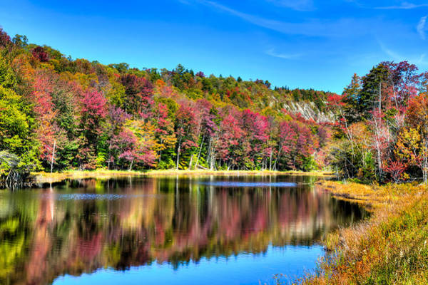 Photograph - Reflections On The Pond by David Patterson