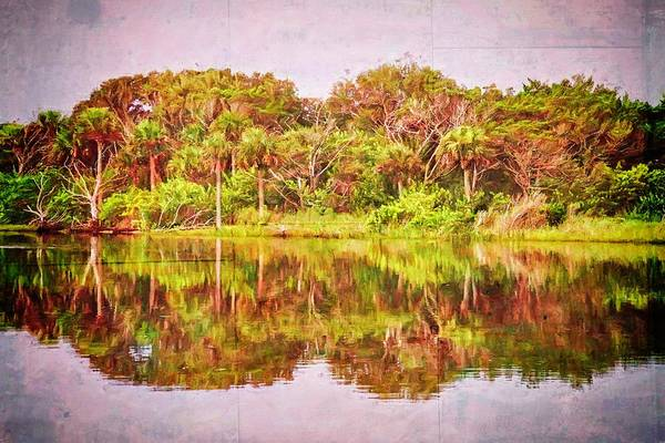 Photograph - Reflections On The Waterway by Alice Gipson