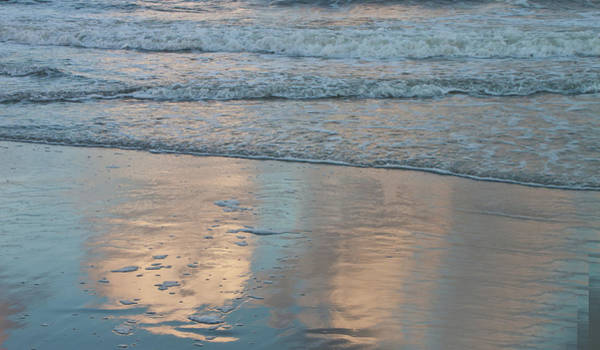 Photograph - Reflections by Ree Reid