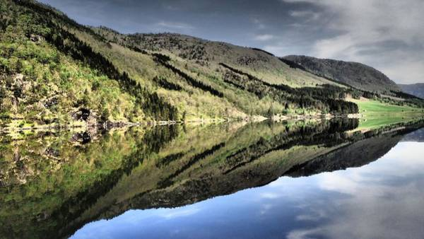 Photograph - Reflections by Susan Jensen