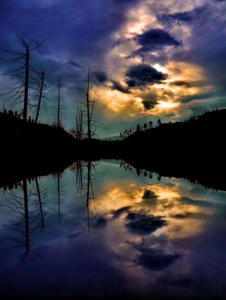 Photograph - Reflections by Tara Turner