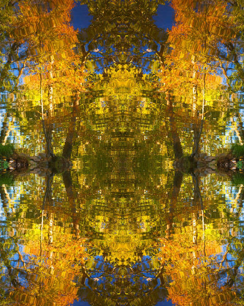 Reflections Trees And Water Art Print