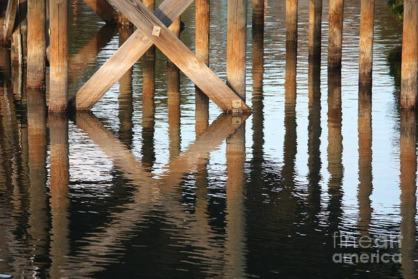 Dock Of The Bay Photograph - Reflections Under The Dock by Carol Groenen