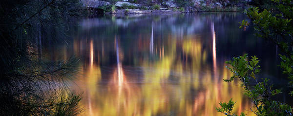 Photograph - Reflective Effects by Nicholas Blackwell