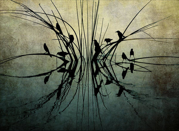 Photograph - Reflective Grunge by Pete Rems