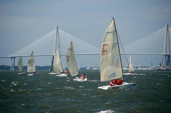 Photograph - Regatta In Charleston Harbor by Susanne Van Hulst