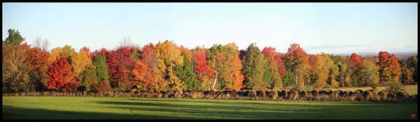 Photograph - Reggie's Hay by John Meader