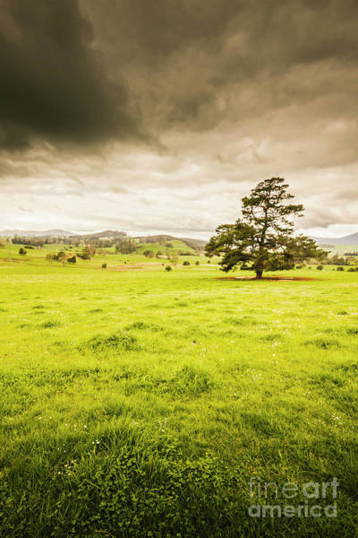 Grassland Photograph - Regional Rural Land by Jorgo Photography - Wall Art Gallery