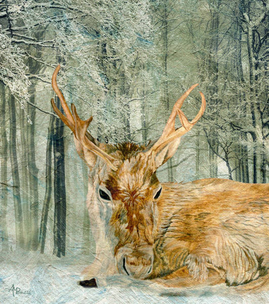 Painting - Reindeer In The Forest by Angeles M Pomata