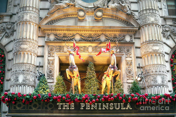 Photograph - Reindeer On The Peninsula Hotel New York City by John Rizzuto