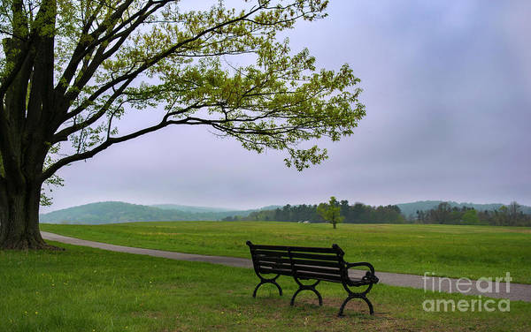 Photograph - Relax And Enjoy The Nature by Rima Biswas