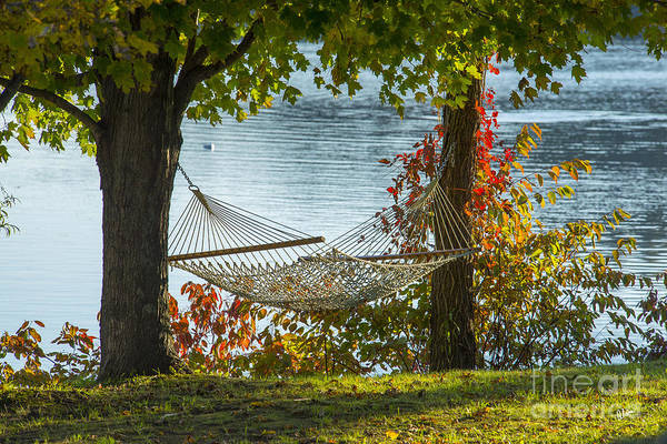 Photograph - Relax By The Water by Alana Ranney
