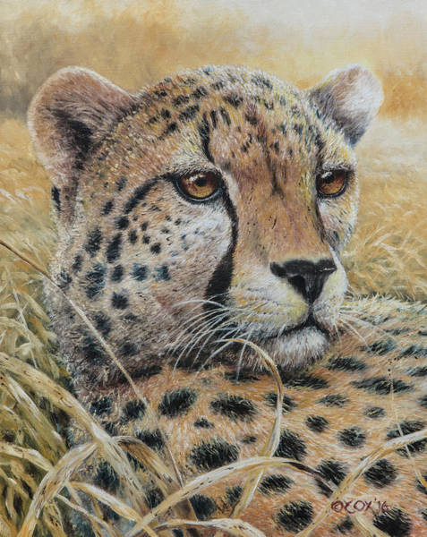 Painting - Relaxed Moment - Cheetah by Christopher Cox
