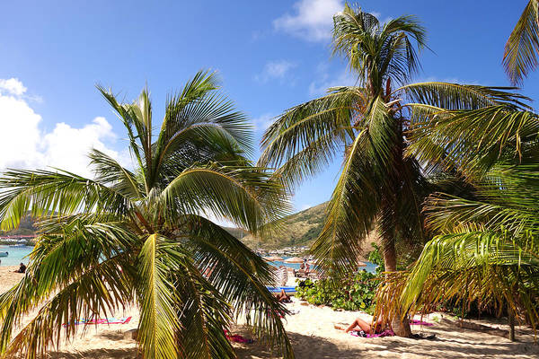 St. Maarten Photograph - Relaxing On The Beach. Pinel Island Saint Martin Caribbean by Toby McGuire