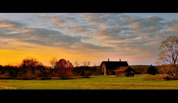 Photograph - Remains Of A Late Autumn Day by Mark Fuller