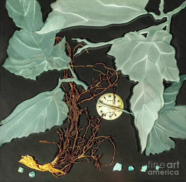 Glass Art - Remembrance Iv by Alone Larsen