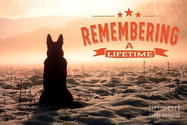 Digital Art - Remembering A Lifetime by Kathy Tarochione