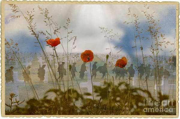 Digital Art - Remembrance by Chris Armytage
