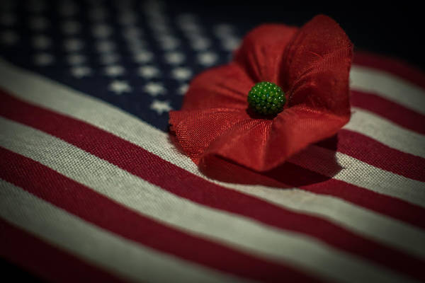 Photograph - Remembrance Usa Flag by Terry DeLuco