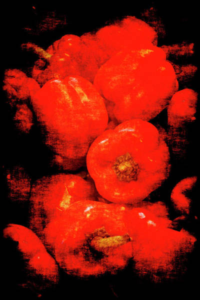 Photograph - Renaissance Red Peppers by Jennifer Wright