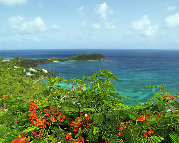 Photograph - Rendezvous Bay 3 by Pauline Walsh Jacobson