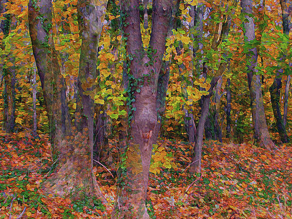 Digital Art - Replete The Vibrant Wood 8 by Lynda Lehmann