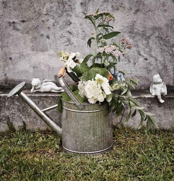Wall Art - Photograph - Repose by Linda Brown