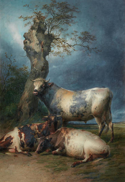 Breeding Painting - Repose by Thomas Sidney Cooper