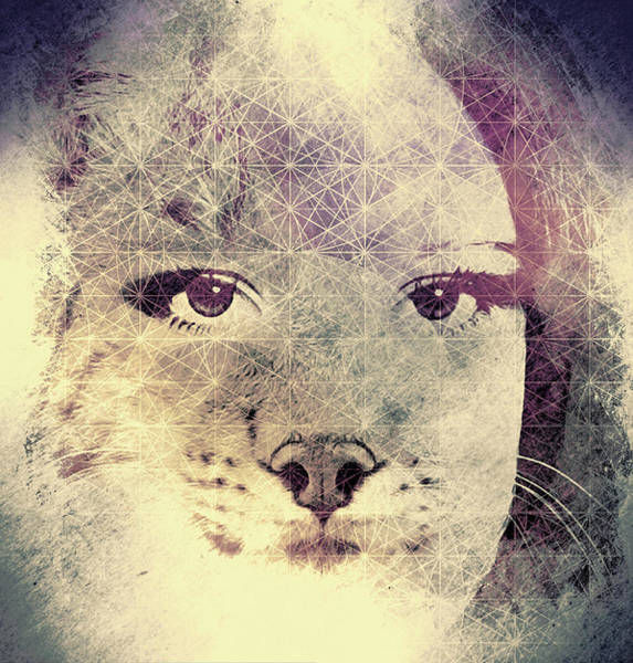 Parenthood Digital Art - Resistance Of The Pussy Cat by Susan Maxwell Schmidt